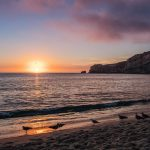 beach nazare sunset sea gulls